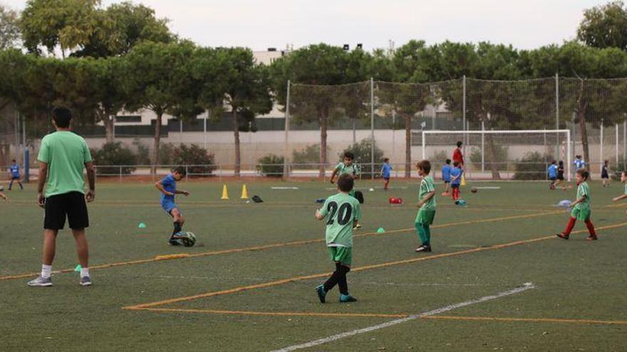 DESESCALADA | El deporte amateur de Castellón aún no puede competir