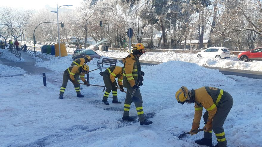 Brigadistas forestales de Tineo apoyan en Madrid la retirada de la nieve
