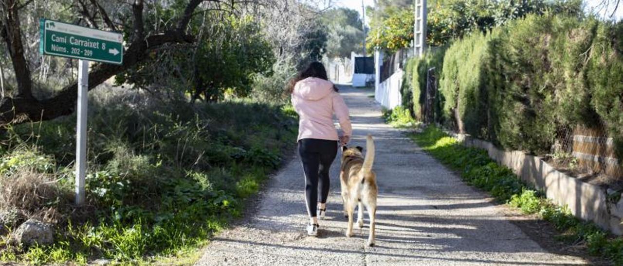 Uno de los caminos de acceso a viviendas de la zona del Carraixet de Xàtiva.  | PERALES IBORRA