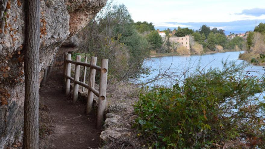 Organitzen una ruta a peu per la senda del botànic Calduch