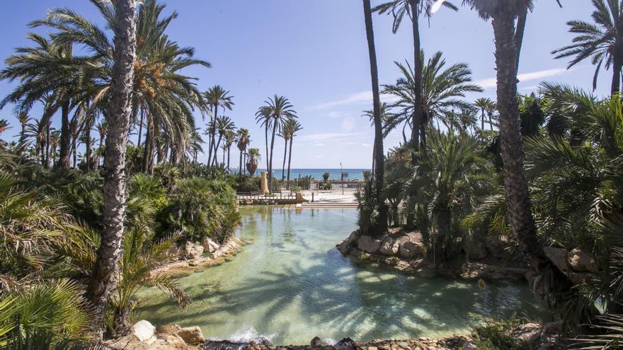El Ayuntamiento de Alicante anima a participar en el programa para conocer seis itinerarios peatonales accesibles guiados