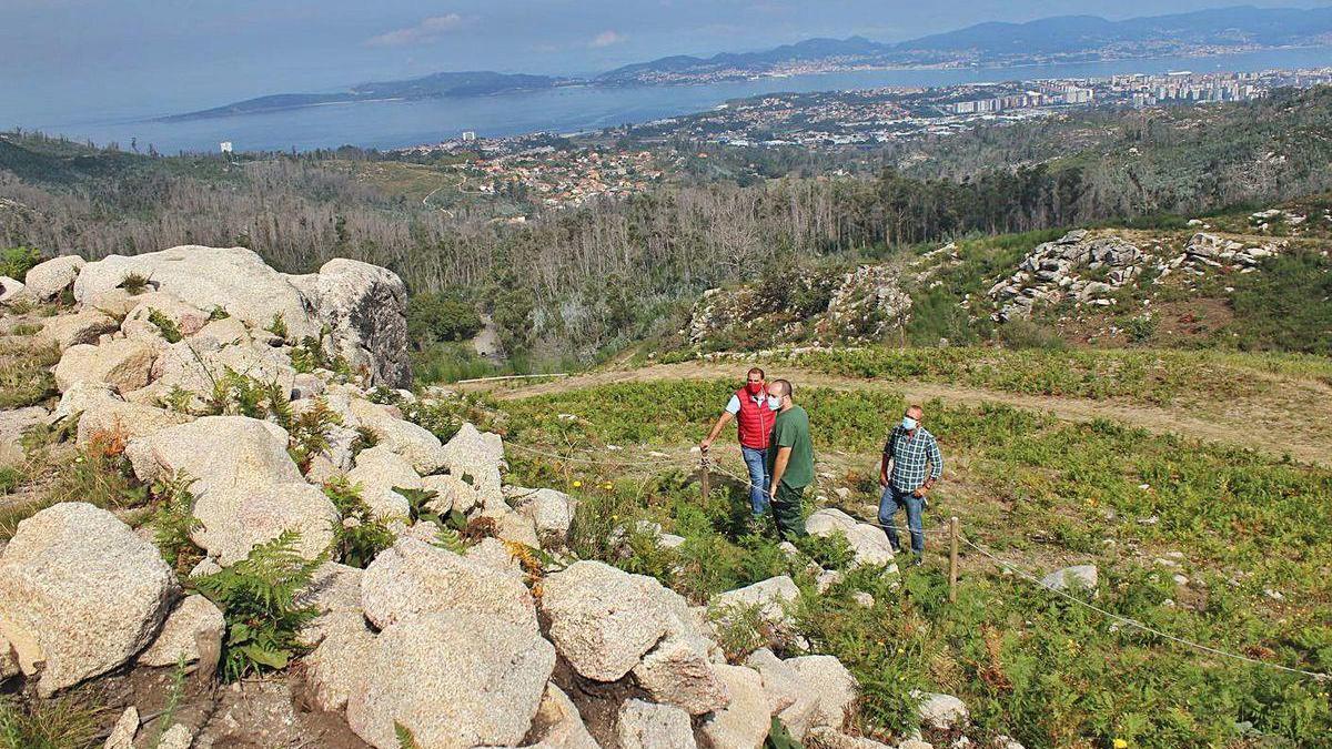 El presidente de la comunidad de montes, el alcalde y un arqueólogo ante parte de la muralla que quedará al descubierto en el castro, con la ría de Vigo al fondo.