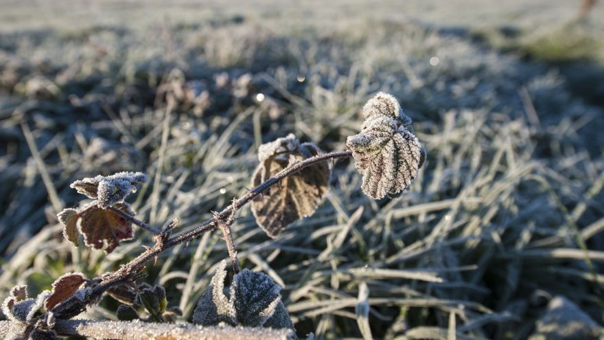 Varias zonas de Ourense han amanecido congeladas este 26 de diciembre de 2020