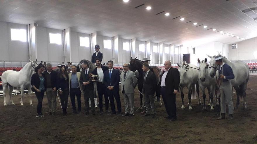 La yeguada 'Las Morerías', premiada como mejor ganadería en Equimur 2019