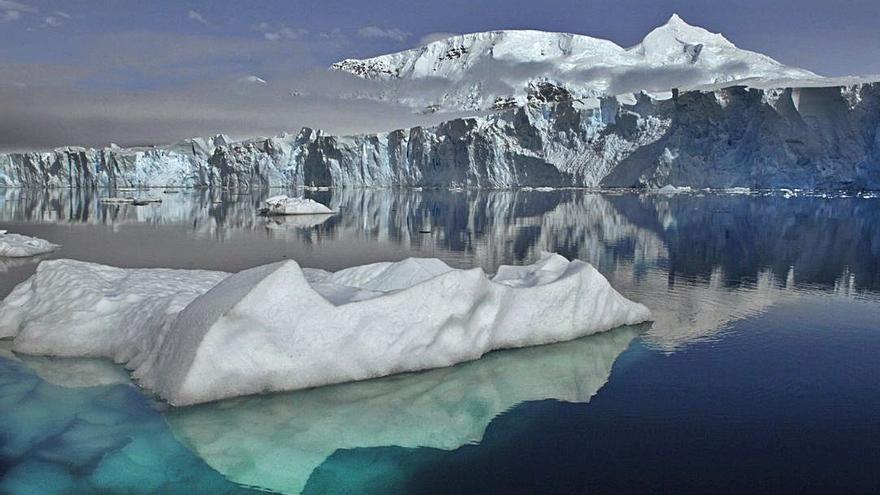 Descubren extrañas criaturas a 900 metros bajo el hielo antártico