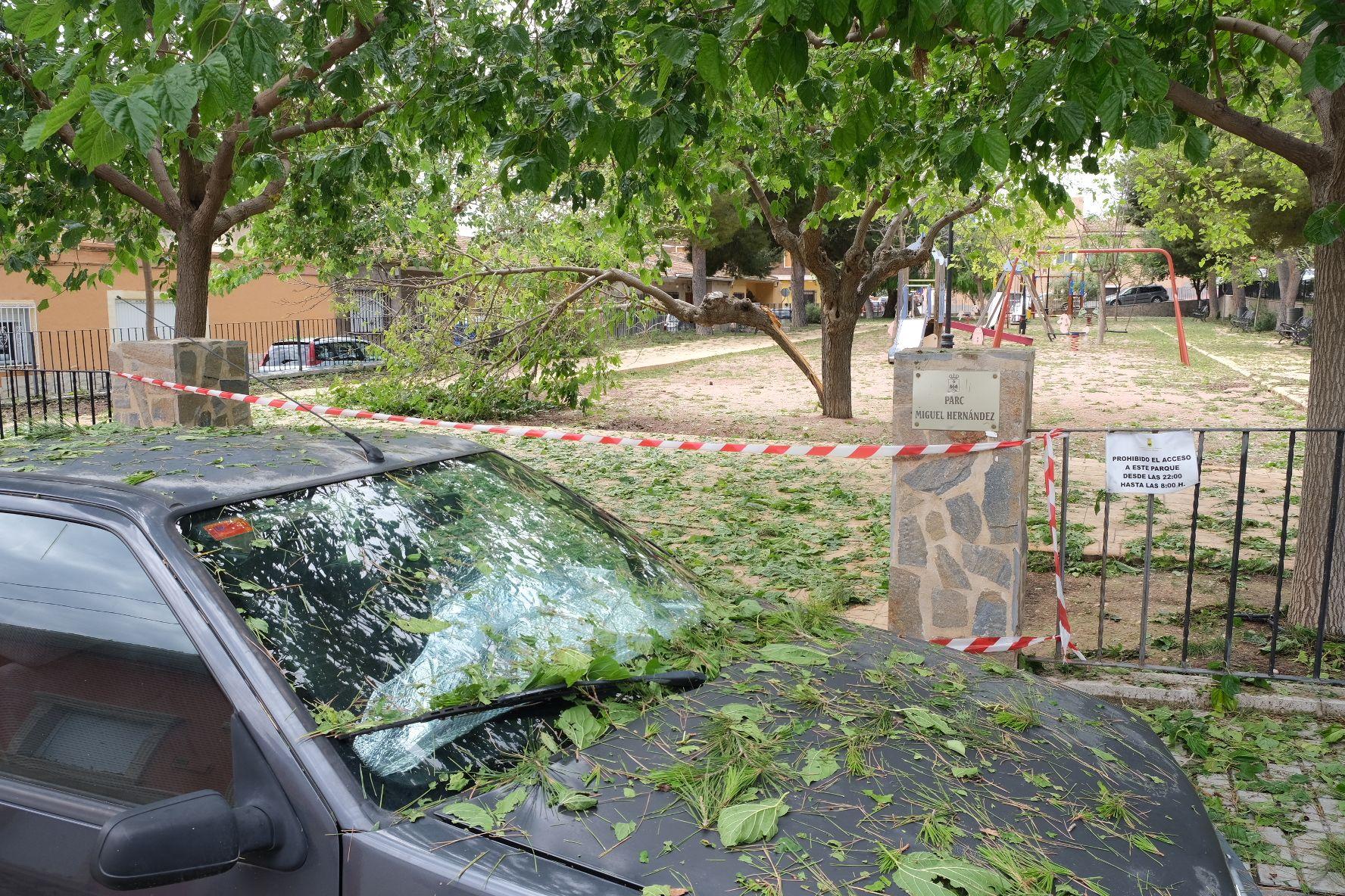 Tormenta de intensidad torrencial con rayos y granizo en el Alto y Medio Vinalopó