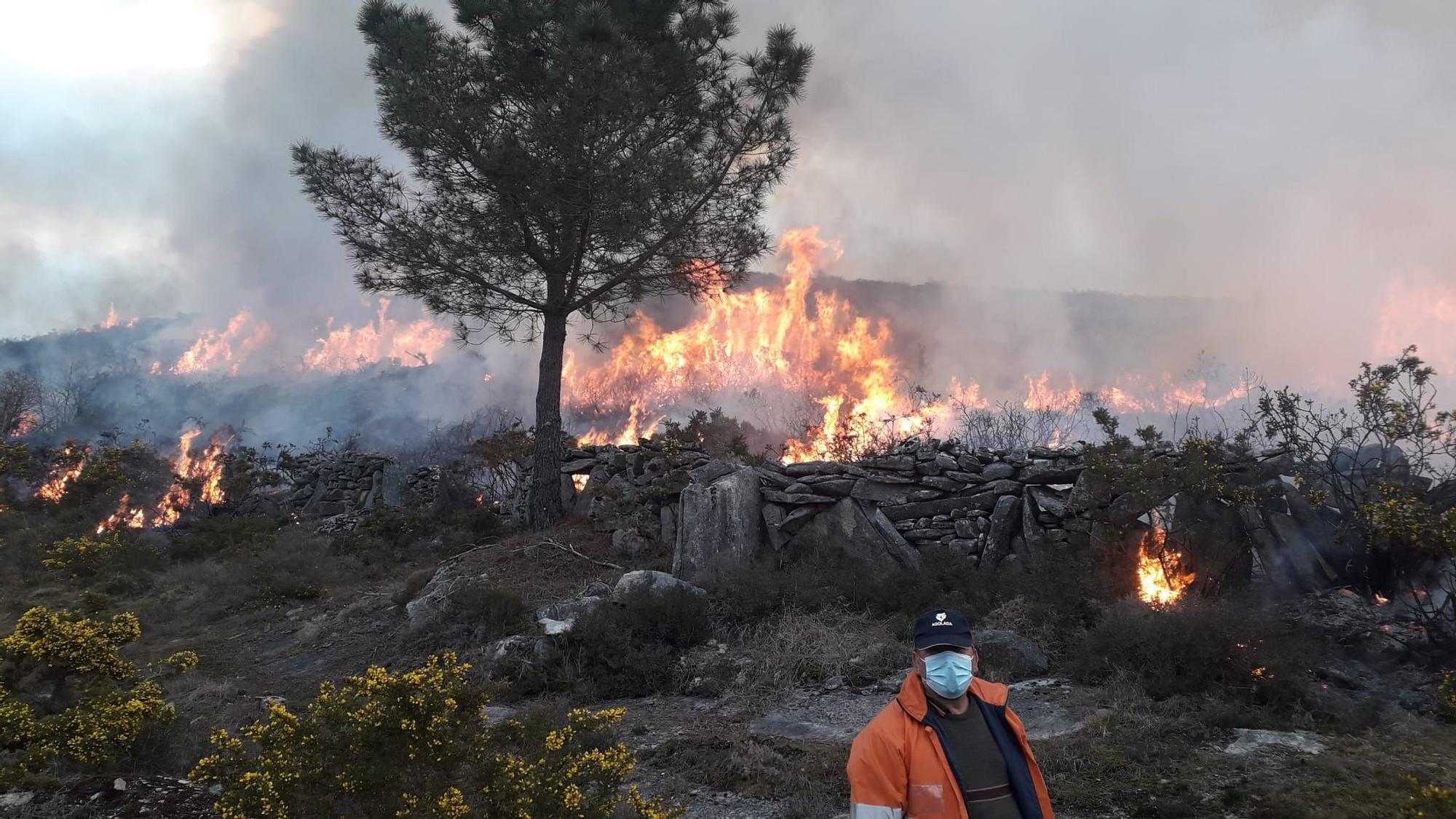 El fuego quemó 20 hectáreas de monte