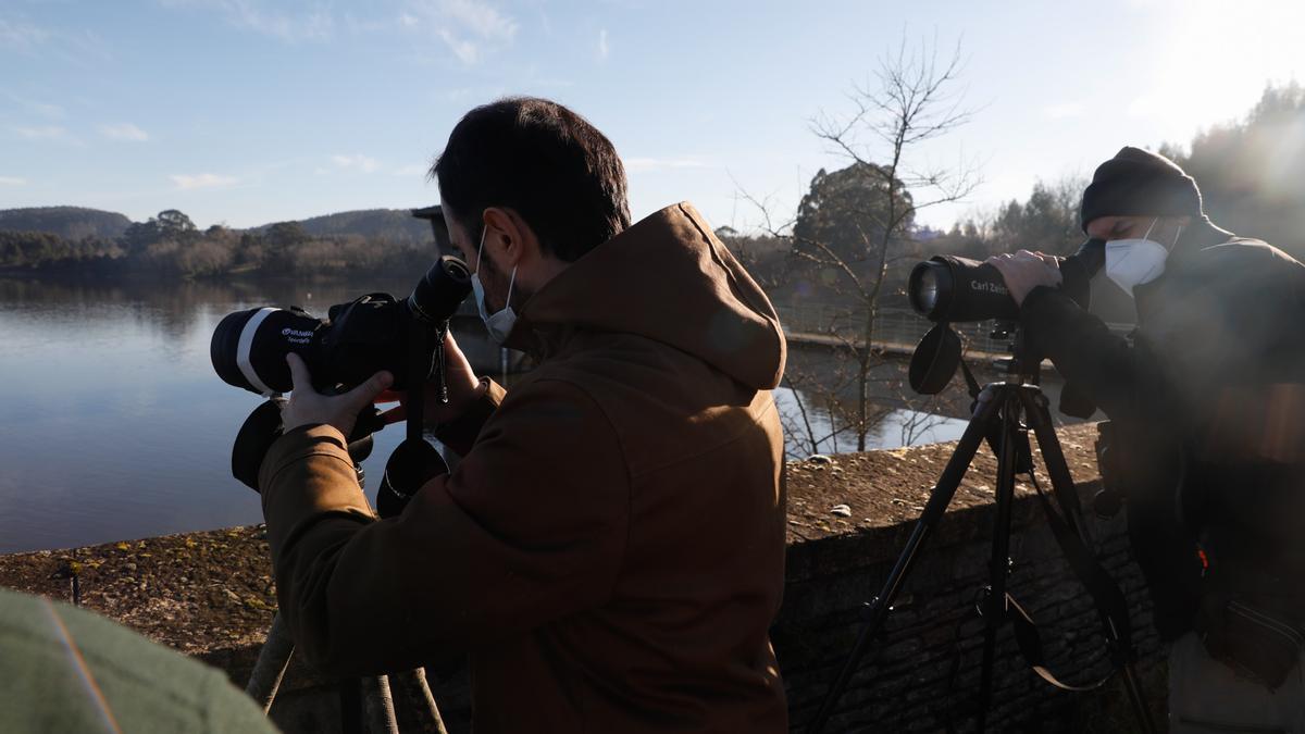 Un momento de la visita a los trabajos para la elaboración del censo de aves invernantes, ayer, en el embalse de La Granda.