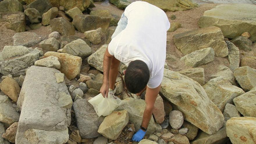 Recullen 15 litres de deixalles a la platja Sa Palomera de Blanes en només dues hores
