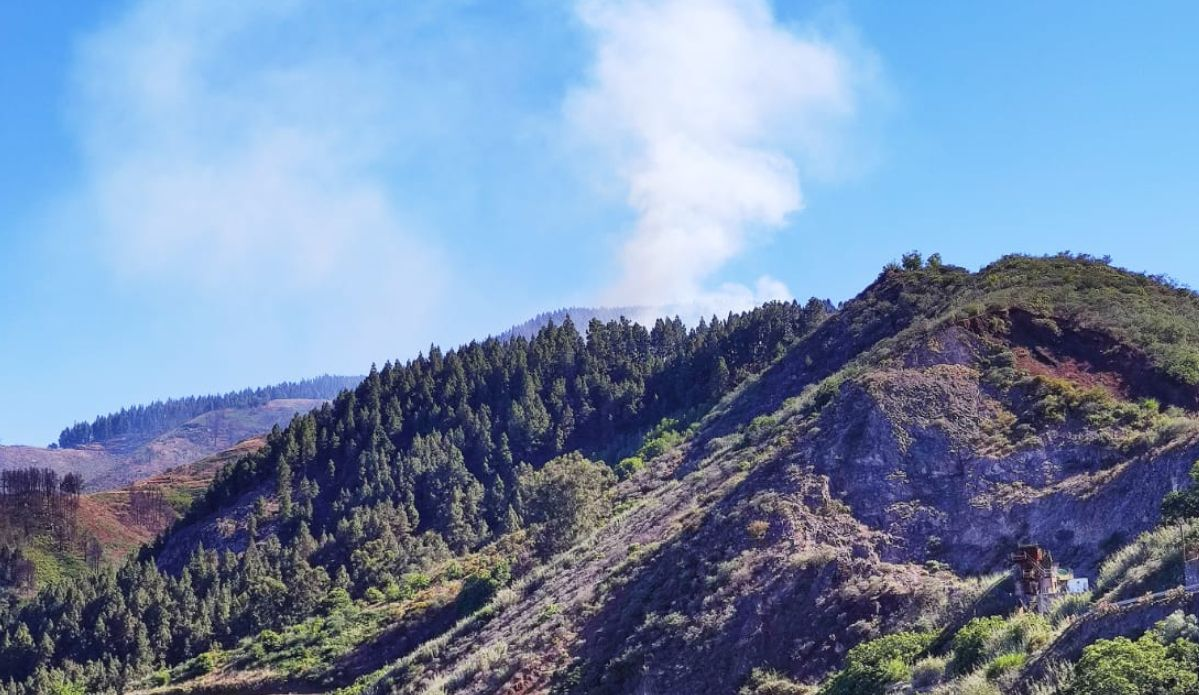 Incendio forestal en Valleseco (30/06/21)