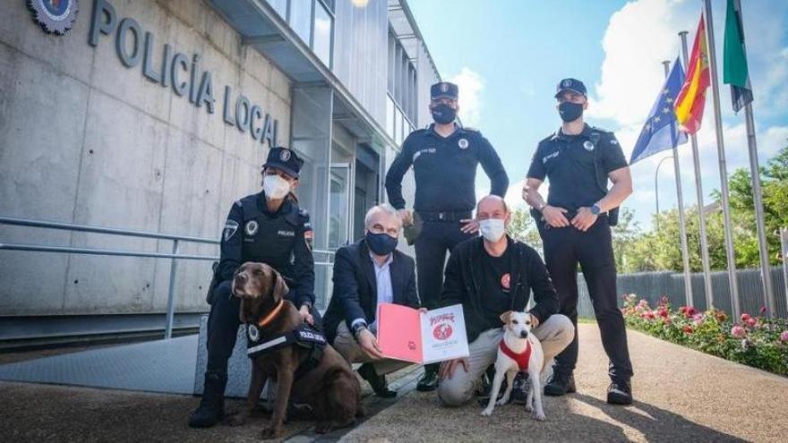 Pipper, el perro turista que viaja por España, llega a Badajoz