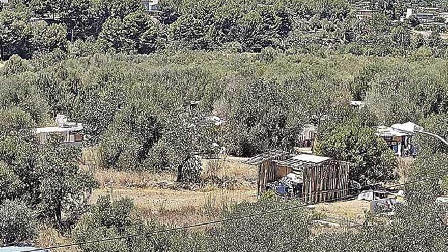 Ciudadanos exige desmantelar el asentamiento chabolista del Secar de la Real