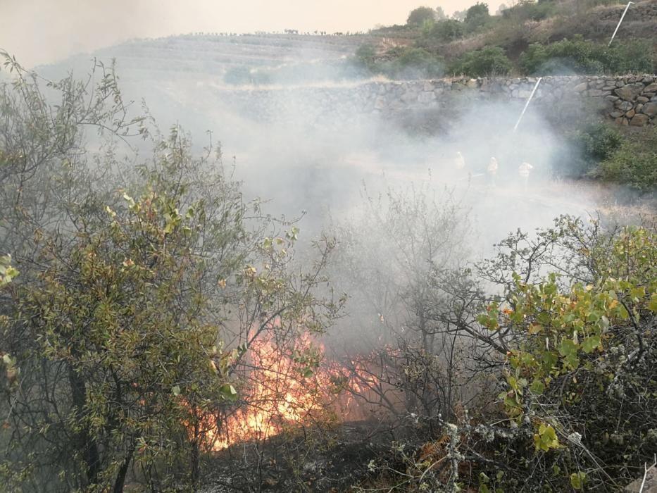 Imágenes del incendio de La Palma