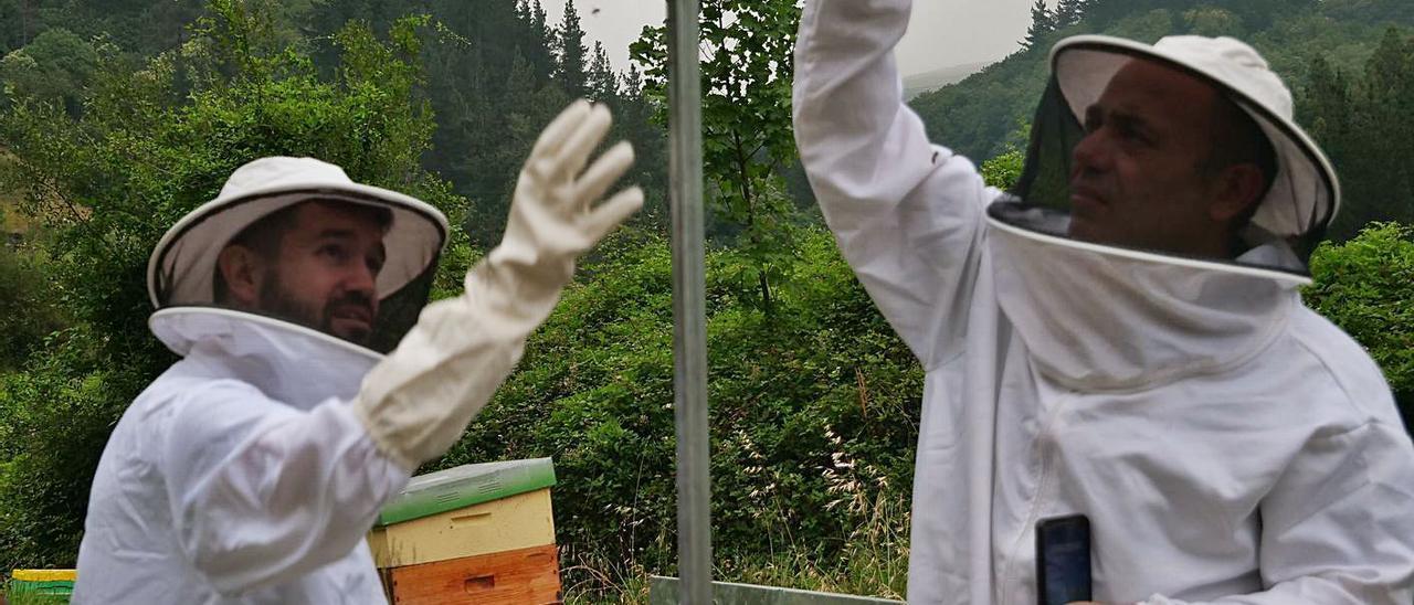 Dos de los técnicos, en una de las colmenas del Suroccidente que participan en el proyecto. | R. D. Á.