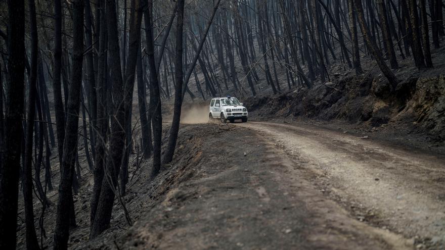 El fuego arrasa 1.450 hectáreas en la Ribeira Sacra lucense