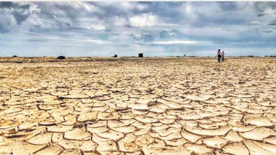 Cualquiera puede frenar el cambio climático y cambio global con cambios en su modo de vida