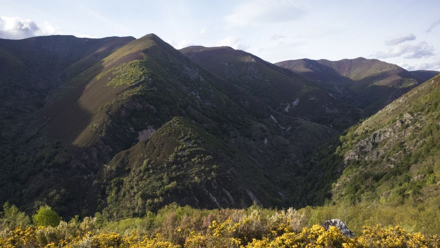 Alerta en 23 concejos asturianos: están en riesgo de desaparecer por la despoblación, según el Banco de España