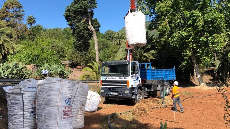 El Cabildo coloca 200 trampas con feromonas para evaluar la incidencia de polilla en los cultivos de papa
