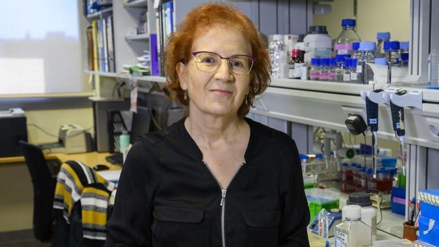 """Margarita del Val: """"En España hemos sido originales al tener una oleada del virus en verano"""""""