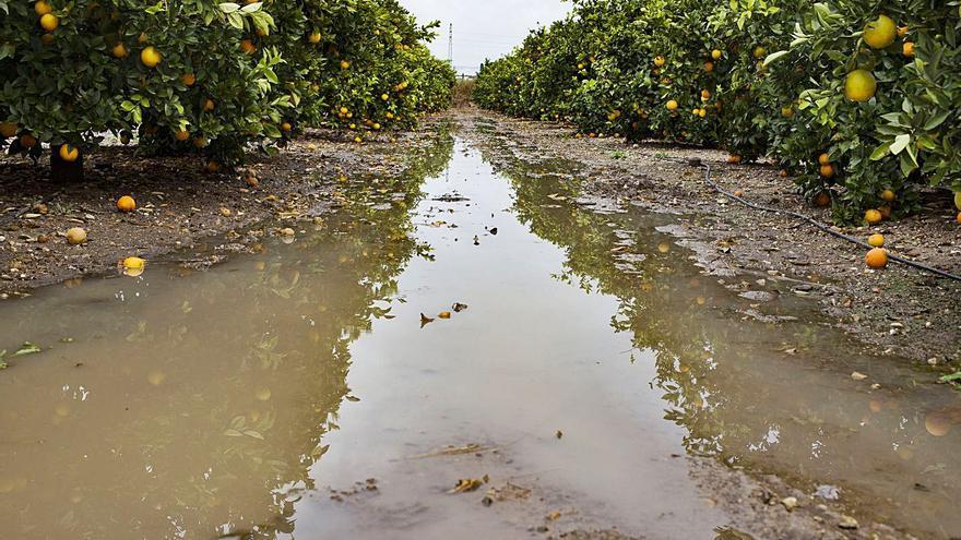 La lluvia deja 223,5 litros en Barxeta y desprendimientos en la CV-425 en Anna