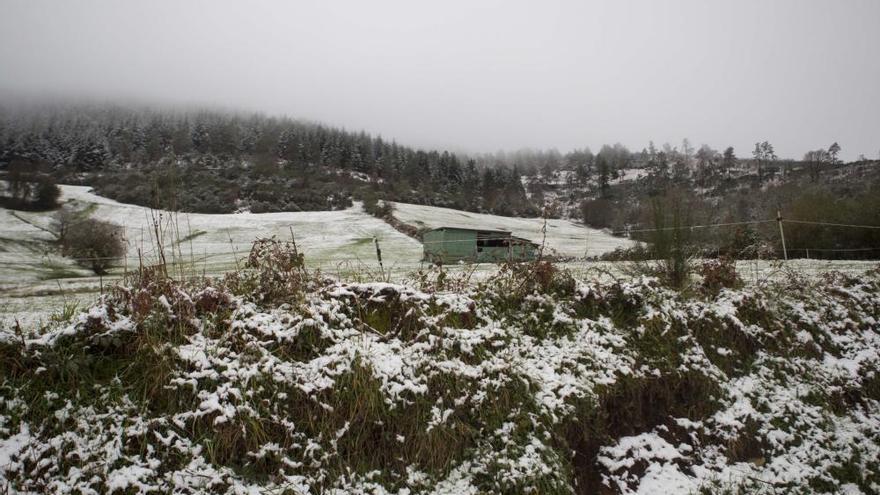 Llegan las primeras nevadas a Galicia