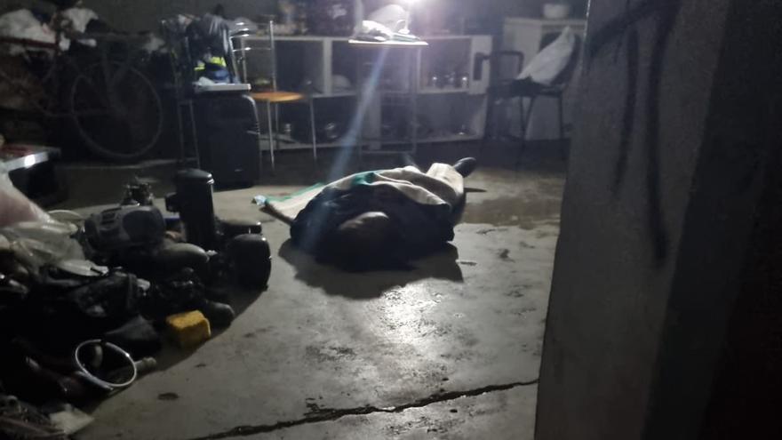 Rescate en una fábrica en ruinas en Benimaclet