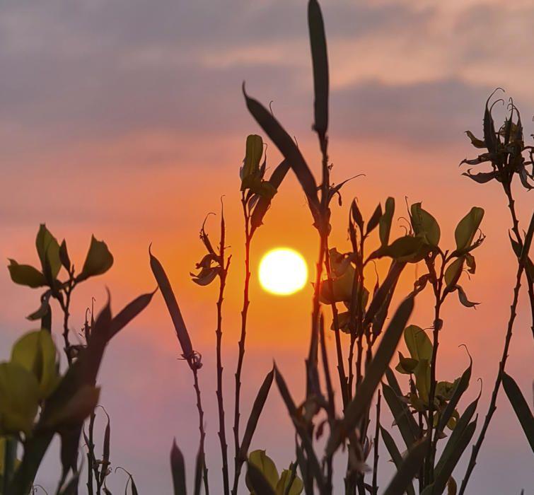 Sortida del sol a Marganell.