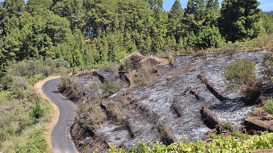 Los agricultores piden el uso compartido para el riego de las redes contraincendios