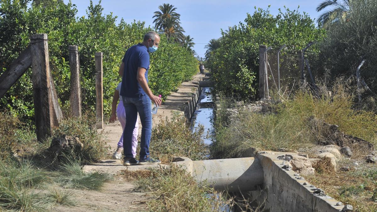 La acequia de La Hoya donde fue encontrado el cadáver de la funcionaria de Justicia de Elche