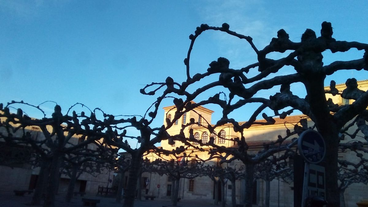 La plaza de Viriato, esta mañana de sábado.