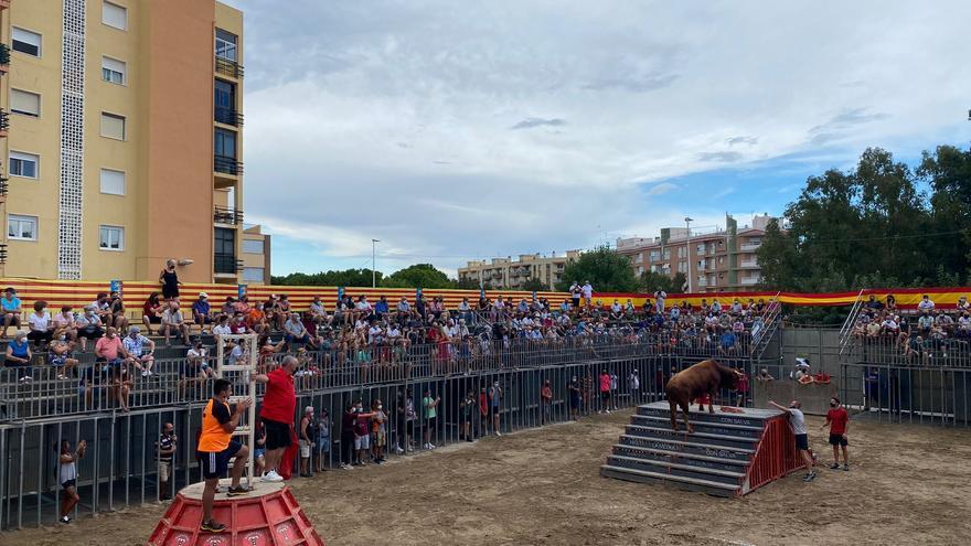 Peñíscola apuesta por ganaderías autóctonas en sus festejos taurinos