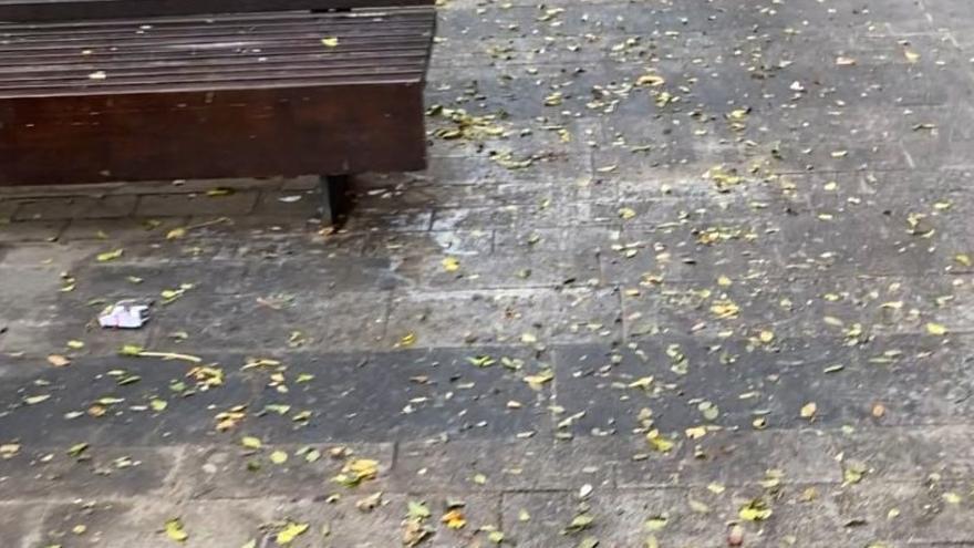 """Cs exige un baldeo de las calles de San Vicente y acusa de """"pasividad"""" al ayuntamiento"""