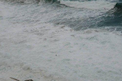 El temporal en el mar no causa daños, pero obliga a la flota a permanecer amarrada