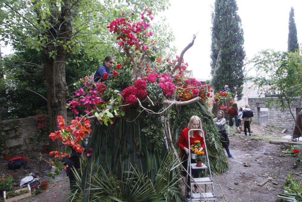 Preparatius de Temps de Flors