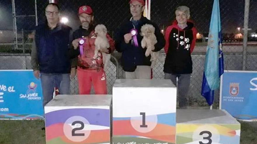 El club de Agility de Almussafes salda el mes de diciembre con ocho medallas