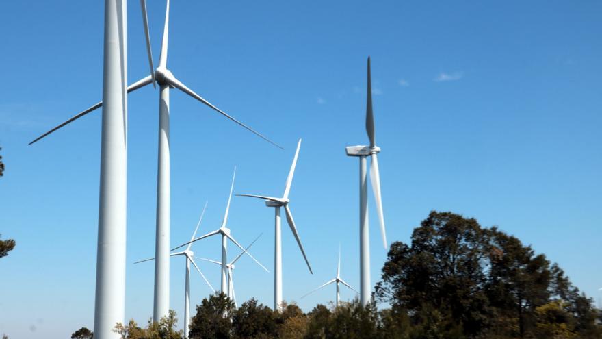 """Els ecologistes denuncien que el decret de renovables s'aplica de forma """"autoritària"""""""