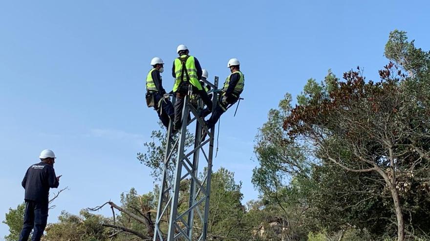 Endesa invierte 52 millones en la red eléctrica de Baleares