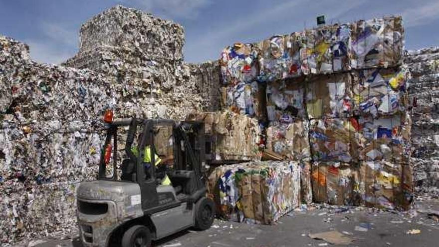 La Mancomunidad repite por cuarto año el máximo galardón en la recogida de papel y cartón