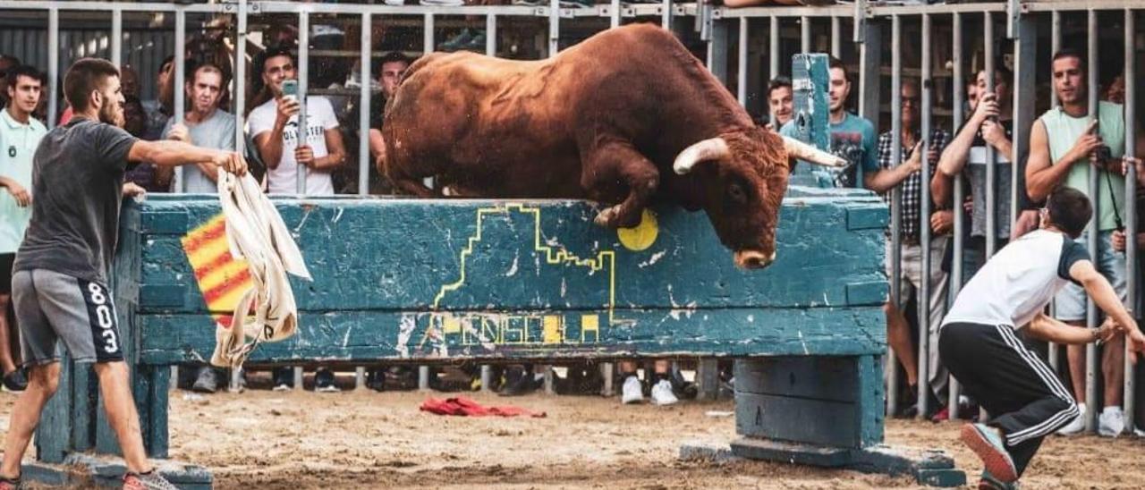 La Penya Migdia exhibió toro de la Plata en Rafelbunyol.