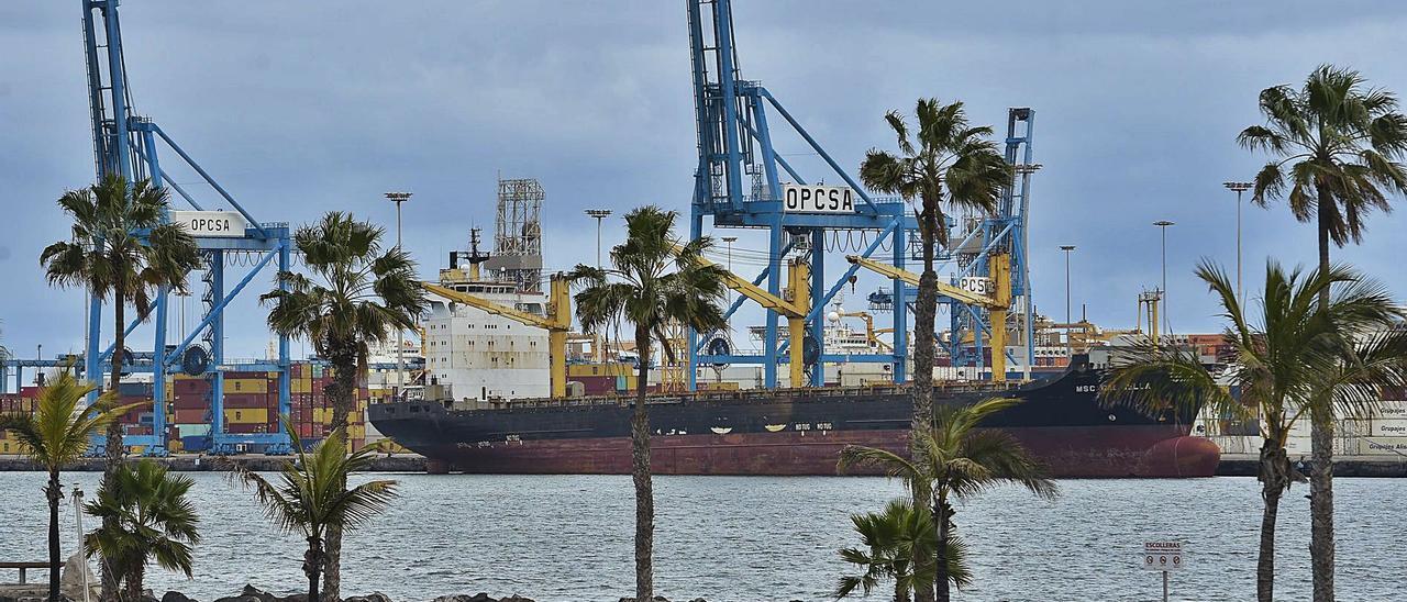 El 'MSC Gabriella', atracado en el muelle León y Castillo junto a la terminal de Opcsa en el Puerto de Las Palmas, el pasado uno de enero.
