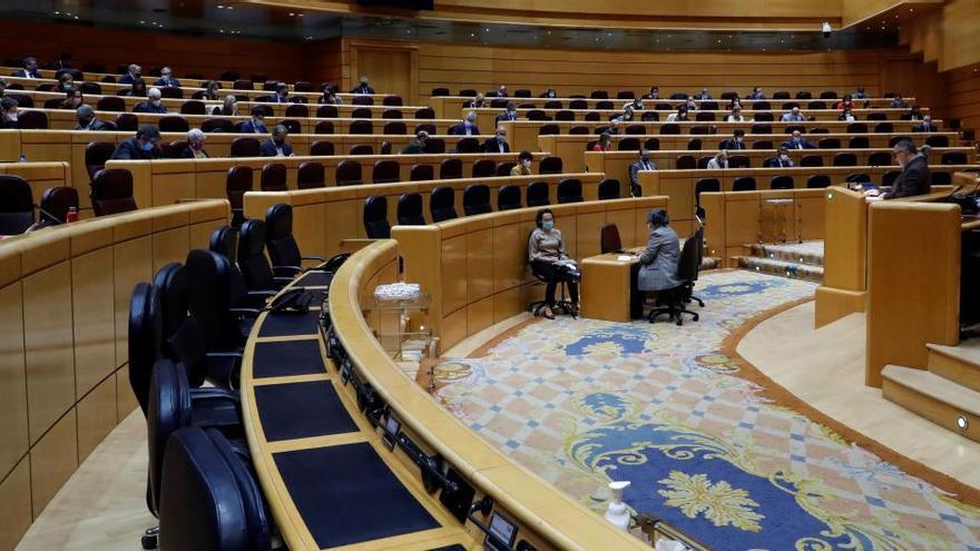 El Senado aprueba una moción para instar al Gobierno a crear un comité de expertos