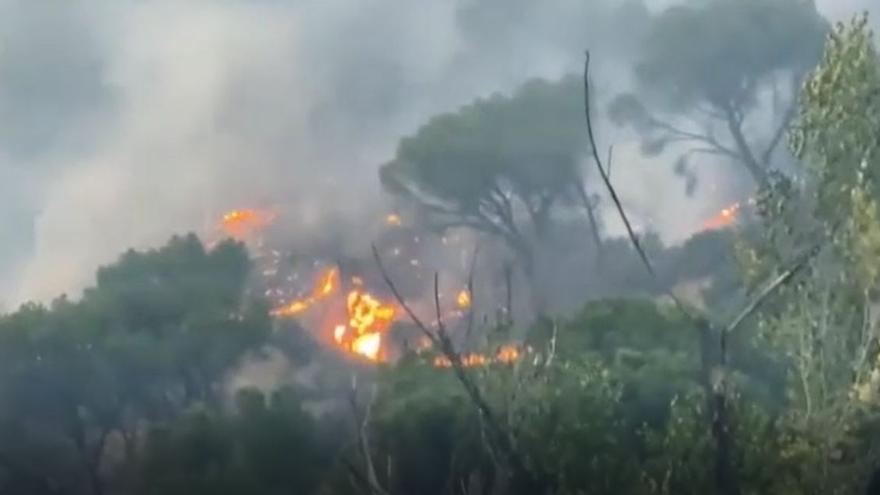 El incendio del pantano de San Juan (Madrid) ya está estabilizado
