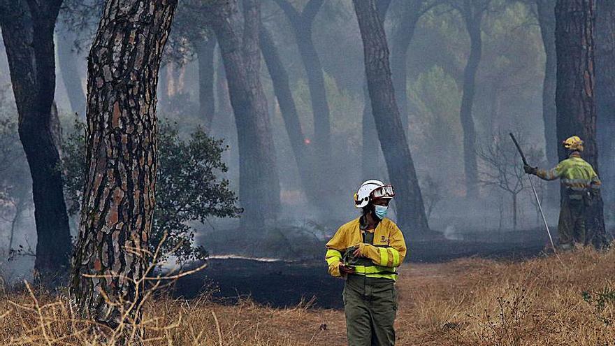 Un fuego en Simancas quema 30 hectáreas