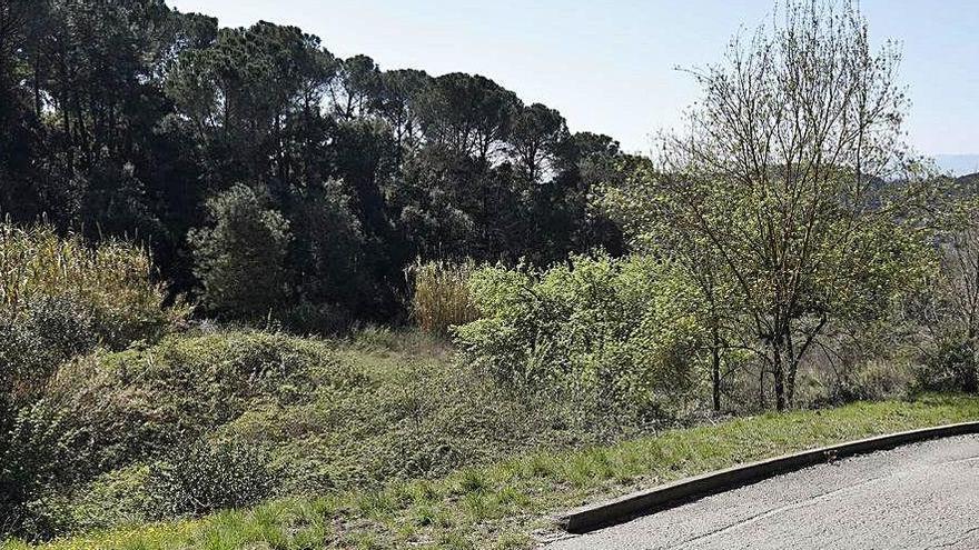 Girona ofereix uns terrenys per al futur Centre d'Acollida d'Animals del Gironès