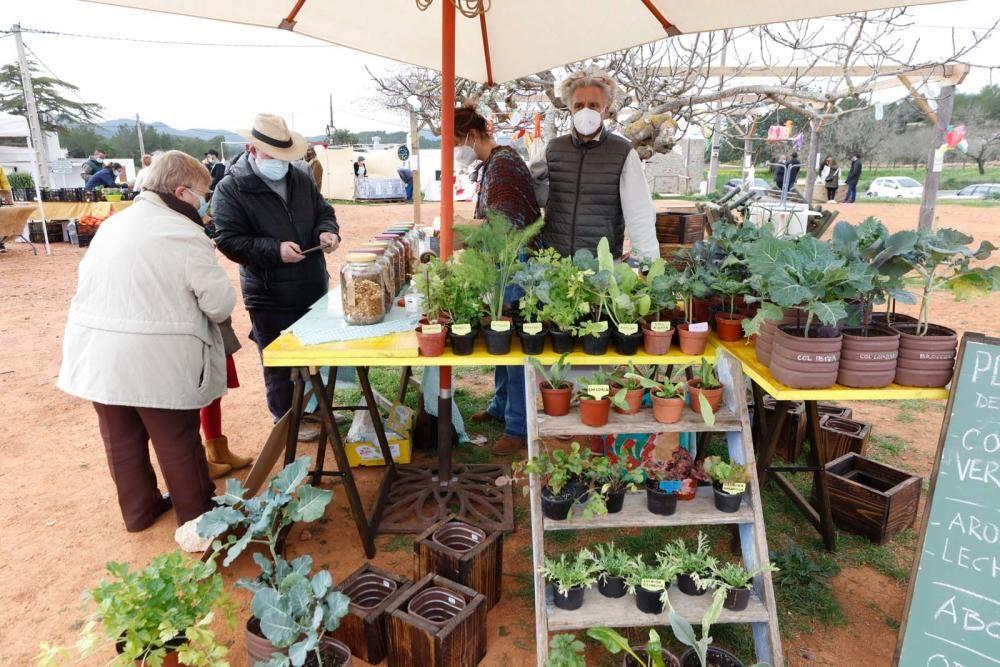 Cada sábado, una veintena de puestos de artesanía y de fruta y verdura se pone en marcha desde las 10 a las 16 horas