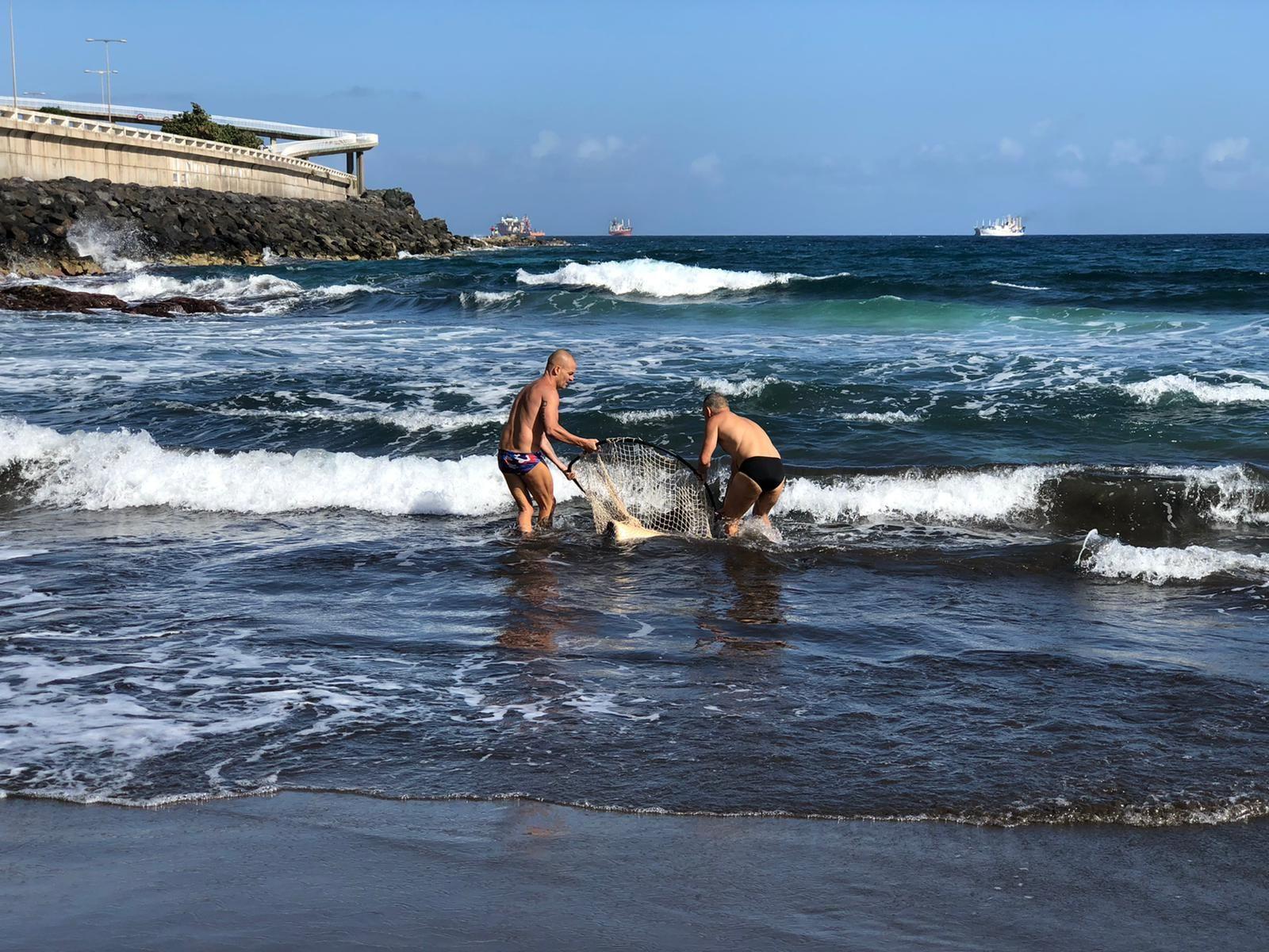 2 - Rescate mantelina piscinas La Laja noviembre 2020.jpg