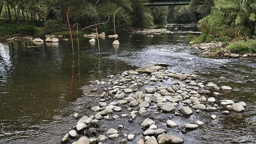 Detecten medicaments, pesticides i metalls pesants en molts punts dels rius