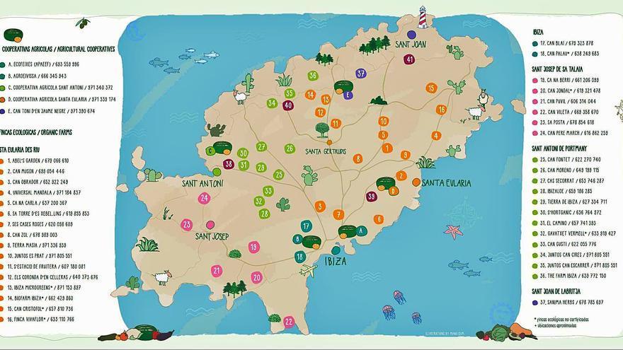 Aumenta un 2,8% la superficie cultivada de agricultura ecológica en Ibiza