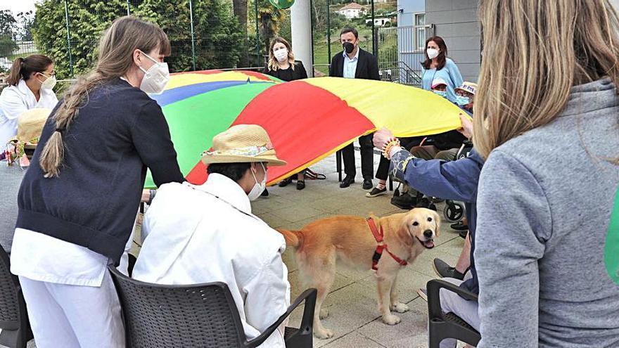 La innovadora terapia canina, un éxito en el centro Pai Menni