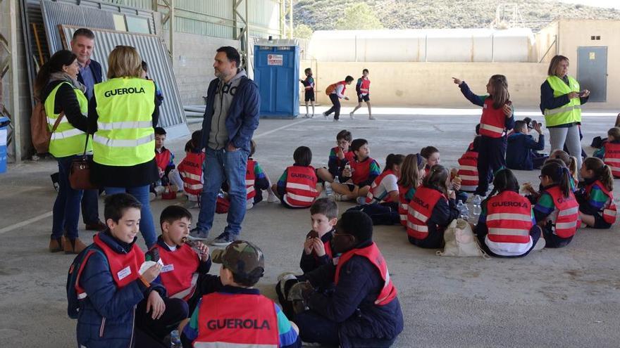 Cerca de un centenar de escolares de Ontinyent participan en el Día de los Árboles y de los Áridos